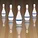 Download 5 Pin Bowling Companion 3.0.2 APK
