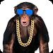 Download Amazing Talking Monkey 1.2 APK