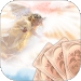 Download Angel Tarot - Free reading 2.9 APK