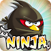 Download Angry Ninja Diet 1.01 APK
