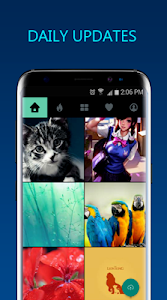 Download Best HD Wallpapers Backgrounds 2.5 APK