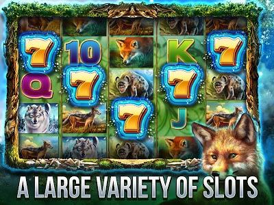 Download Cats Slot Machines 2.8.3110 APK