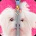 Download Cute Puppy Zipper Lockscreen 2018 1.010.29 APK