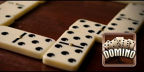 screenshot of Domino version 3.3.1