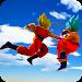 Download Kakarot Super Saiyan Dragon Z go 2.9 APK