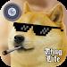 Download MLG Thug Life Photo Editor 1.8 APK