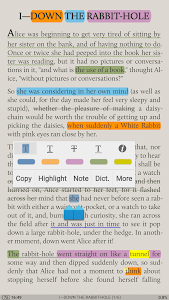 screenshot of Moon+ Reader version 4.5.5b