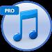 Download Mp3 Downloader 1.1 APK