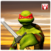 Ninja Turtle Shadow Fight