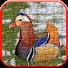 Download Free Jigsaw Wild Animals Puzzle : Casse-Tête 3.1.0 APK