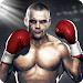 Download Real Fist 3.1.0 APK