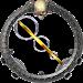 Download Skeleton Rings 1.12 APK