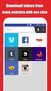 screenshot of Social Tube Video Downloader version 3.0