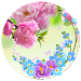 Download Spring Flowers Theme 1.1.22 APK