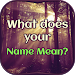 Download What does your Name Mean 1.2 APK