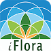 Download iFlora 1.3.1 APK